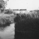 Aunkofener Brücke 1954